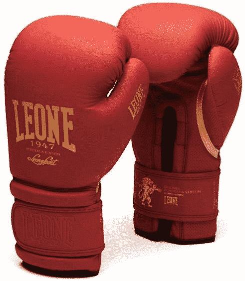 boxe bordeaux