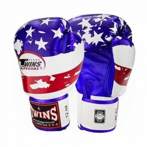 Guantoni da Boxe Twins Special USA